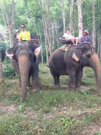 Trekking en elefantes